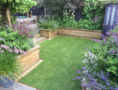 Medium Sized Garden, Streatham