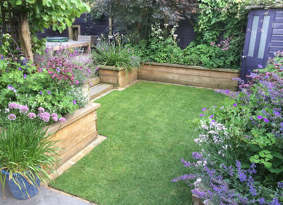 Medium Sized Garden in Clapham