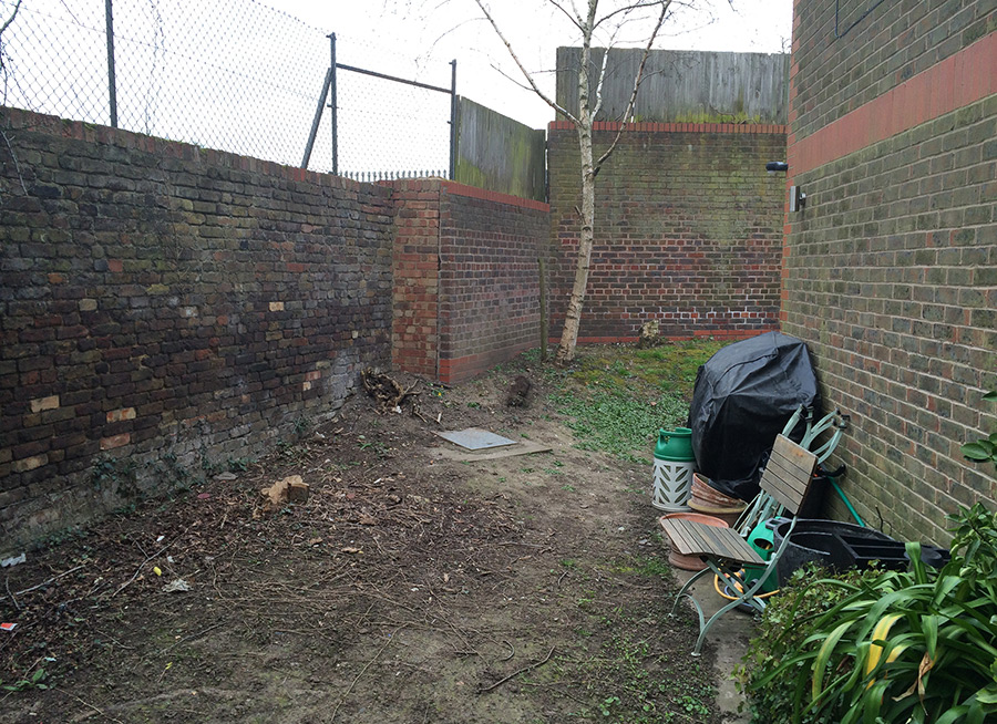 Painted Garden with Side Return in Streatham