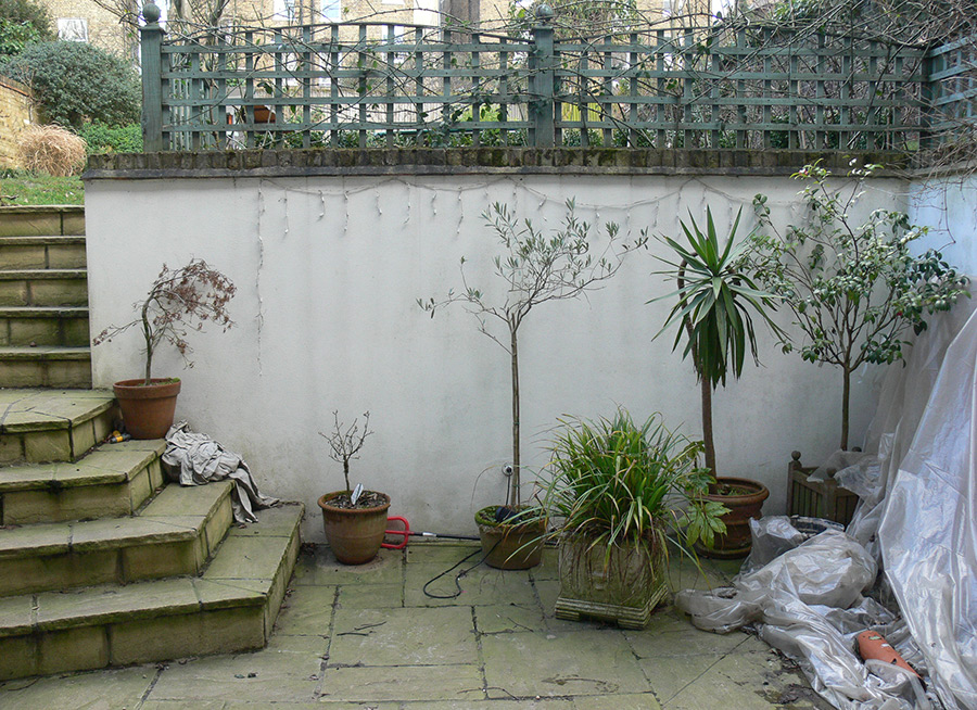Small Basement Courtyard Garden in Clapham