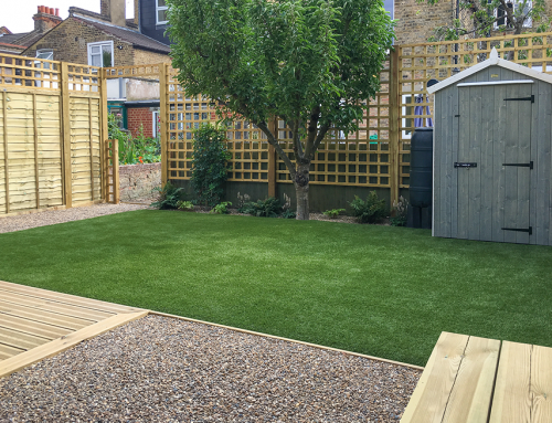 Low Maintenance Garden, Balham