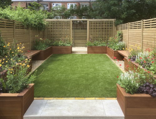 Medium Sized Garden, Clapham South