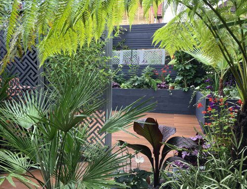 Small Tropical Garden, Earlsfield